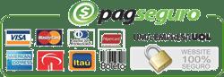 Logo do PagSeguro