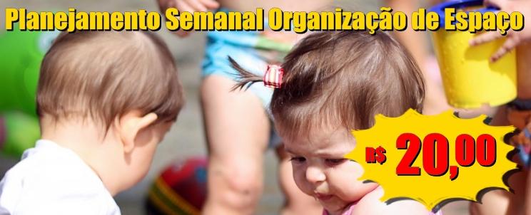 Planejamento Organização e Espaço para Educação Infantil